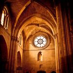 Psalmen zingen in de kerk